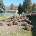 Sod rolled up for garden
